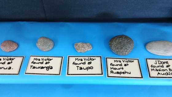 The very start of our rock display.  Send your rock to Room One to add to our learning.
